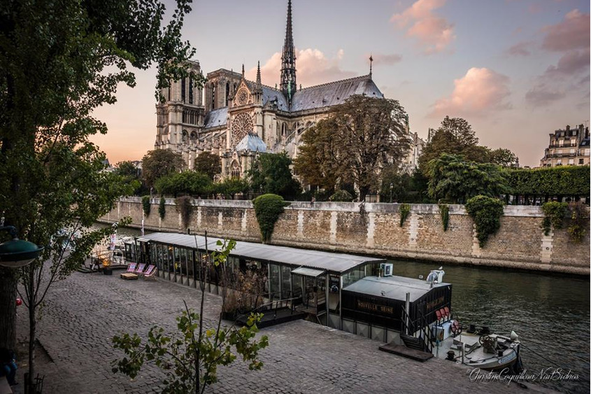 Image 1/5 La Nouvelle Seine